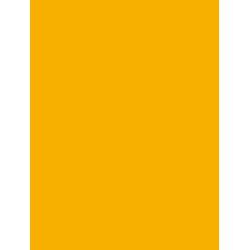 pauls handyman icon